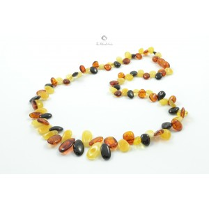 Adult Multi Amber Necklace N121