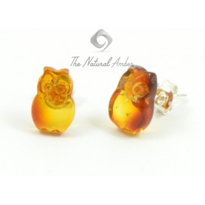 E119 Cognac Owl Amber Stud Earrings with Sterling Silver 925