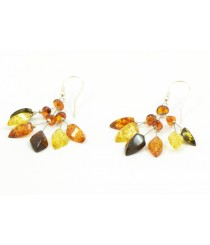 E161 Leaf Amber Drop Earrings with Sterling Silver 925