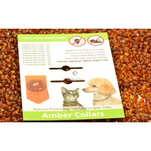 Packaging for Pet Collars C1
