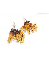 E105 Rainbow Amber Drop Earrings