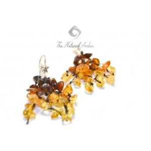 Rainbow Amber Drop Earrings E105
