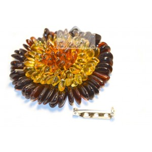 Baltic Amber Flower Brooch BR100